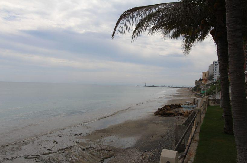Ocean Front Breeze Marianita