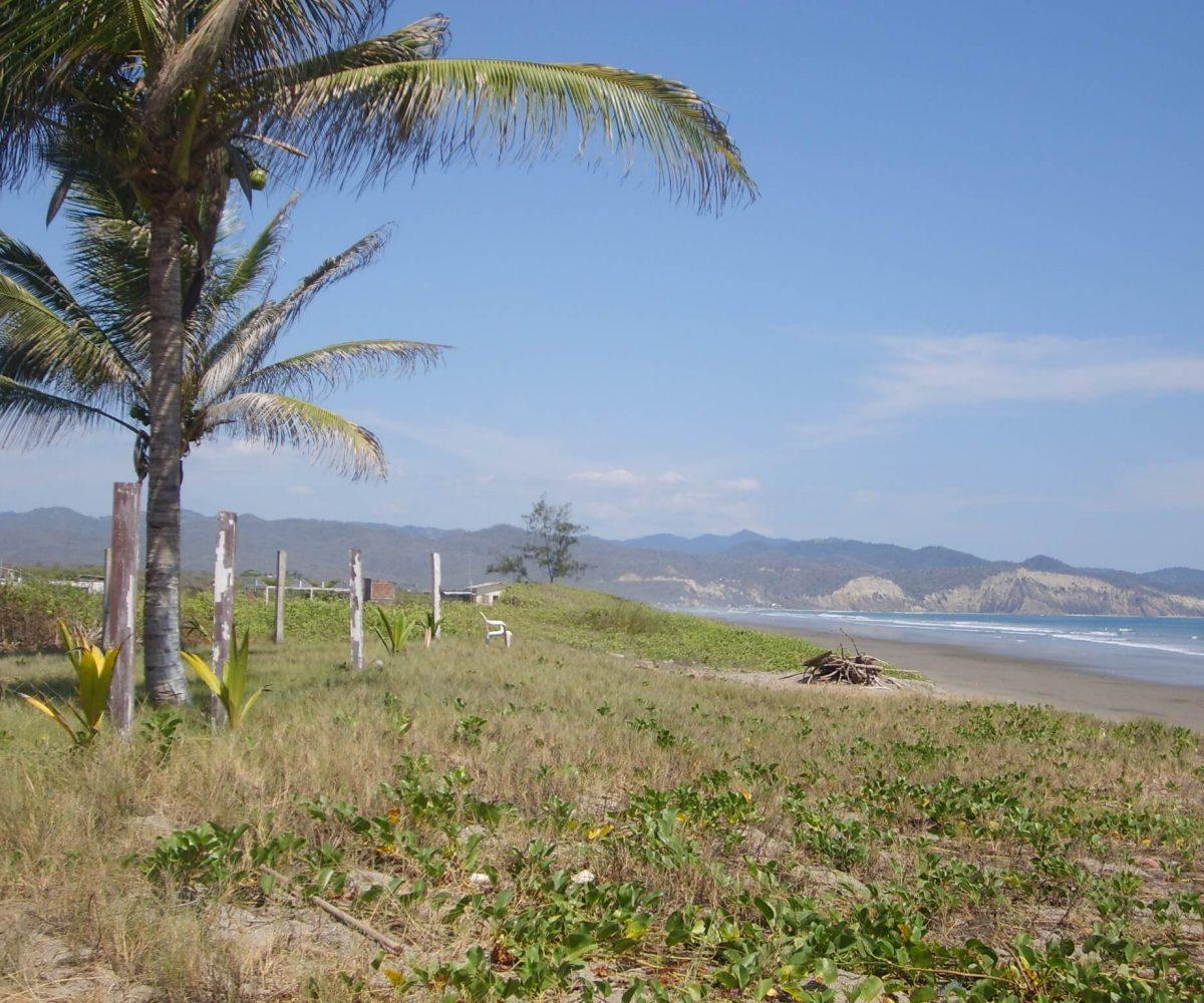 Puerto Cayo Land 2