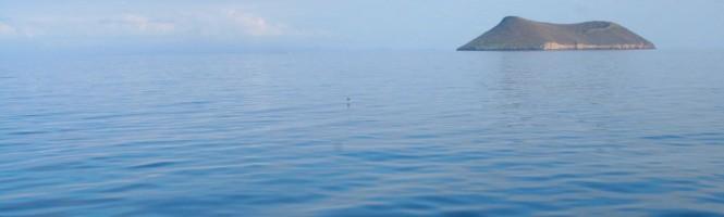 An island near Manta